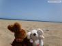 Gran Canaria-Urlaub 2011