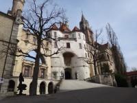 _DSC05091__2014-03-11__Manuel-Tschugg__Sigmaringen