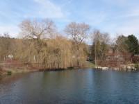 _DSC05100__2014-03-11__Manuel-Tschugg__Sigmaringen